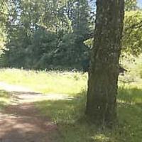 North Santiam State Recreation Area