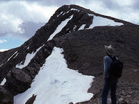 Schell Pico Norte