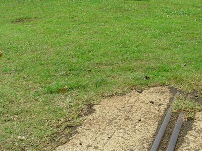 Narow Gauge Rail Tracks