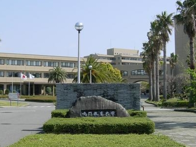 Naruto University Of Education