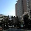 Japan Womens University
