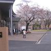 Nihonbashi Gakkan Universidad