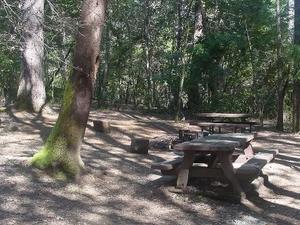 Seis ríos Oak Bottom Campground