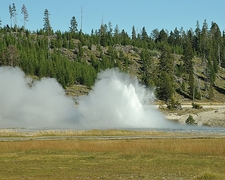 Oblong Geyser - Yellowstone - USA