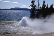 Occasional Geyser - Yellowstone - USA