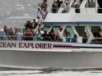 Oceanexplorer4petco 2