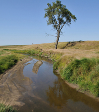 Okabena Creek