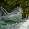 Okere Falls Scenic Reserve