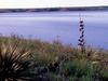Okobojo Point Recreation Area