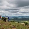 A Taste of Masai Mara Safari
