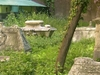 Signs Of Decay At This Historical Burial Ground
