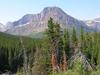 Oldman Lake Trail At Glacier - Montana - USA