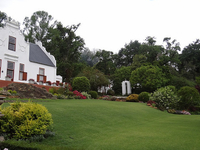 New Years Eve Cape Winelands Day Tour