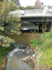 Olinda Creek At Lilydale