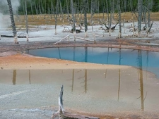 Opalescent Pool
