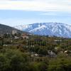 Oracle Mt Lemmon