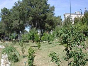 Jardín Botánico de la Universidad de Lecce
