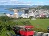 Overlooking Wellington Harbour - New Zealand