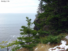 Owls Head State Park
