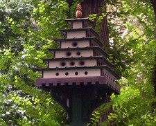 One Of The Birdhouses In The Park