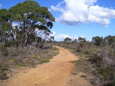 Old Quarry Track