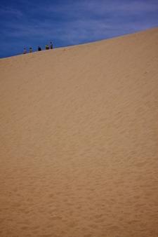 The Dunes At Jockey's Ridge