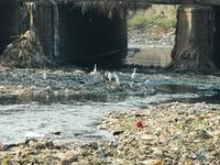 Oshiwara River