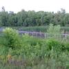 Experimental Wetland