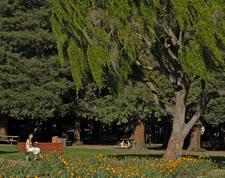 Overfelt Gardens