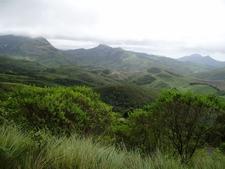 Munnar Views 08
