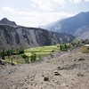Paddy Cultivation In Ladakh