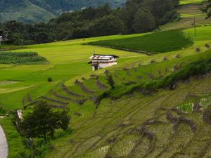 Arunachal Pradesh Holiday Package Photos