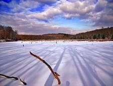 Painter Swamp - Pike County - Pennsylvania