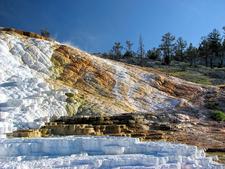 Palette Spring - Yellowstone - USA