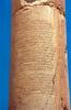 Inscription Of Queen Zenobia At Palmyra