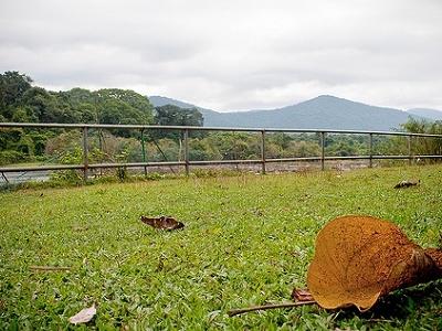 Paniyeli Pporu Near Kochi - Kerala