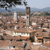 Panorama Of Lucca