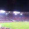 Panorama Of Stadio Olimpico