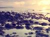 Pantai Batu Hitam