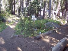 Paradise Ridge Trail