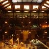 Inside The Grande Galerie De L'évolution