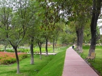 Parque Selva Alegre