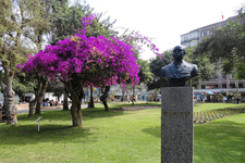 Parque Kenndy View With Statue