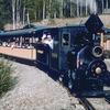 Passengers Aboard The Train At El Dorado Gold Mine