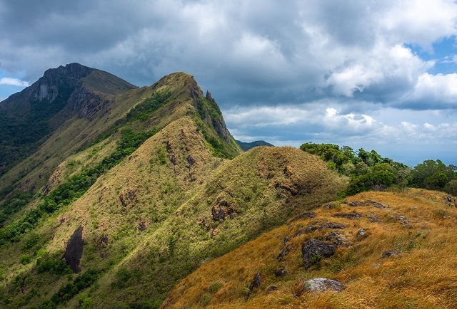 Kehelpothdoruwegala Hike - The Peak of Eastern Edge of Knuckles Photos