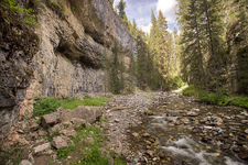 Pebble Creek Trail - Yellowstone - USA