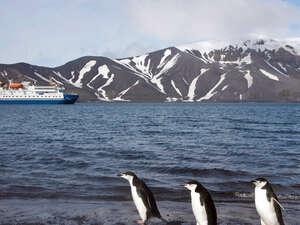 6-Day Antarctica Express Cruise Photos