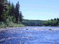 Penobscot del Corredor del Río