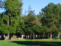 Parque del Pueblo