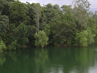 Peppara Wildlife Sanctuary
